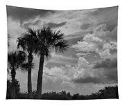 Moody Florida Sky Tapestry