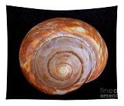 Moon Shell Tapestry
