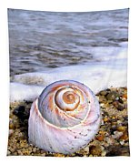 Moon Snail Tapestry