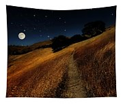 Moon Walk Tapestry