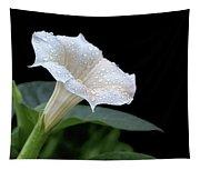 Moonflower - Rain Drops Tapestry