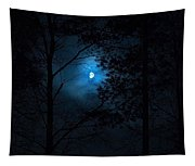 Moonshine 02 Tapestry