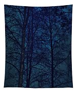 Moonshine 12 Blue Sky Tapestry