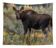 Moose Calf In Fall Colors Tapestry