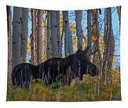 Moosey Tapestry