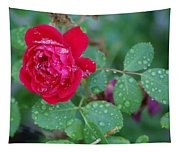 Morning Dew On A Rose Tapestry