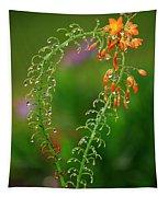 Morning Dew On Orange Flowers Tapestry