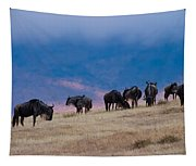 Morning In Ngorongoro Crater Tapestry