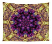 10301 Morning Sky Kaleidoscope 01b Tapestry