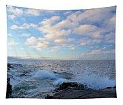 Morning Splash Tapestry