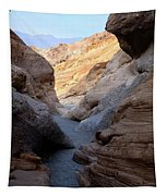 Mosaic Canyon Tapestry