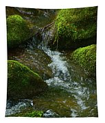 Mose On Rocks  Tapestry