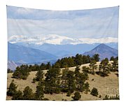 Mosquito Range Mountains From Bald Mountain Colorado Tapestry