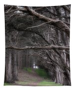 Moss Beach Trees 4191 Tapestry