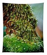 Moss Tapestry