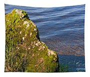Moss Covered Rock And Ripples On The Water Tapestry