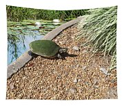 Moss Covered Turtle Tapestry