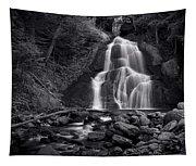 Moss Glen Falls - Monochrome Tapestry