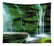 Mossy Falls - 2981 Tapestry