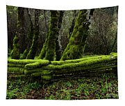Mossy Fence 3 Tapestry