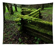 Mossy Fence 5 Tapestry