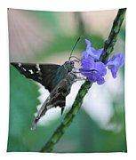 Moth On Blue Flower Tapestry