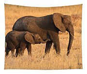 Mother And Baby Elephants Tapestry