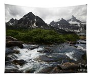 Mount Assiniboine Canada 15 Tapestry