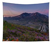 Mount St Helens Renewal Tapestry
