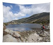 Mount Washington - New Hampshire Usa Lakes Of The Clouds Tapestry