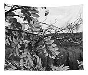 Mountain Ash - Fairbanks Alaska - Monochrome Tapestry