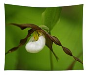 Mountain Lady's Slipper Tapestry