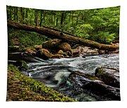 Mountain Stream Iv Tapestry