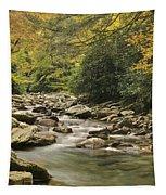 Mountain Stream Tapestry