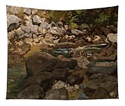 Mountain Stream With Boulders Tapestry
