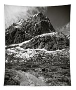 Mountain Track Tapestry