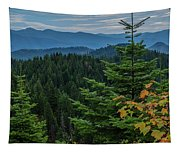 Mountains Around Priest Lake Tapestry