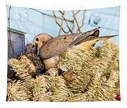 Mourning Dove And Chick Tapestry