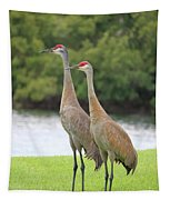 Mr And Mrs Crane Tapestry