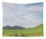 Mt. Diablo Mcr 1 Tapestry