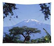 Mt. Kilimanjaro,moshi,tanzania Tapestry