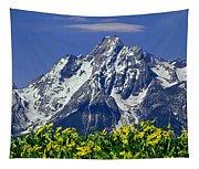 1m9224-mt. Moran  Tapestry