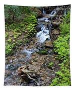 Mt. Spokane Creek 2 Tapestry