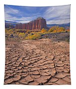 212648-mud Cracks Upper Cathedral Valley  Tapestry