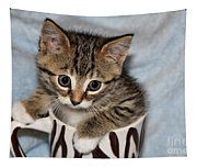 Mug Kitten Tapestry