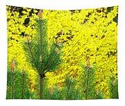 Mugo Pine And Forsythia Tapestry