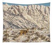Mule Deer Buck In Winter Sun Tapestry