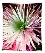 Multi Color Aster Tapestry