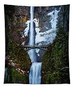 Multnomah Falls Frozen Tapestry