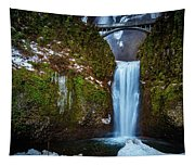 Multnomah Falls With Ice Tapestry